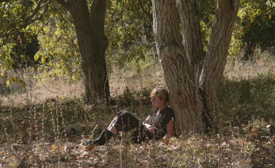 Review: Homelands (2020)