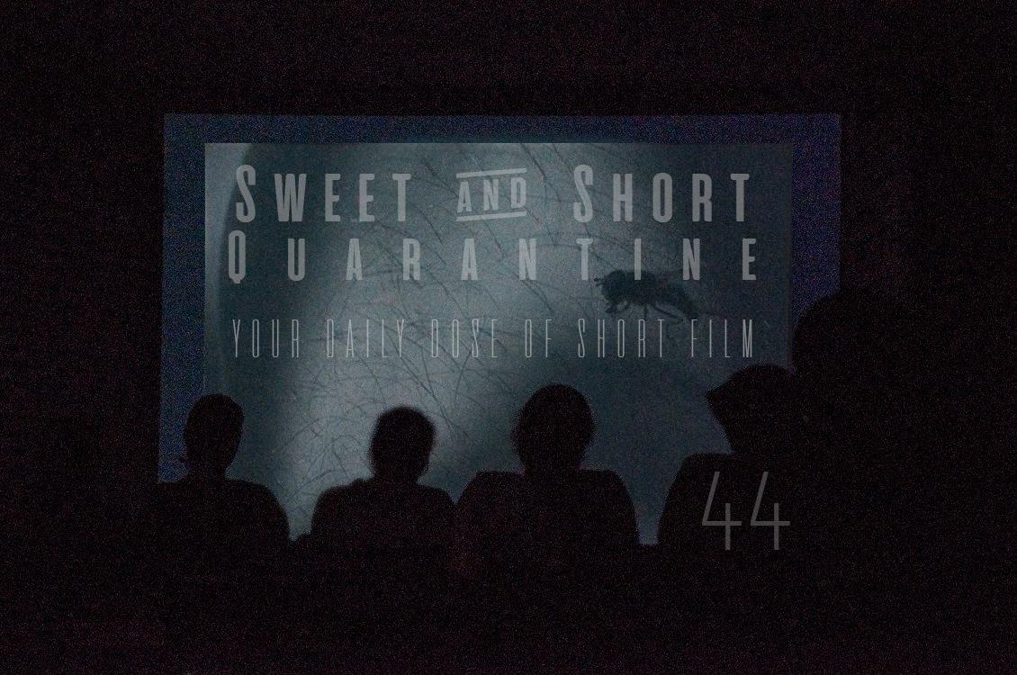 Sweet and Short Quarantine Film Day 44: THIS FILM LUSTS FOR INTERPRETATIONS