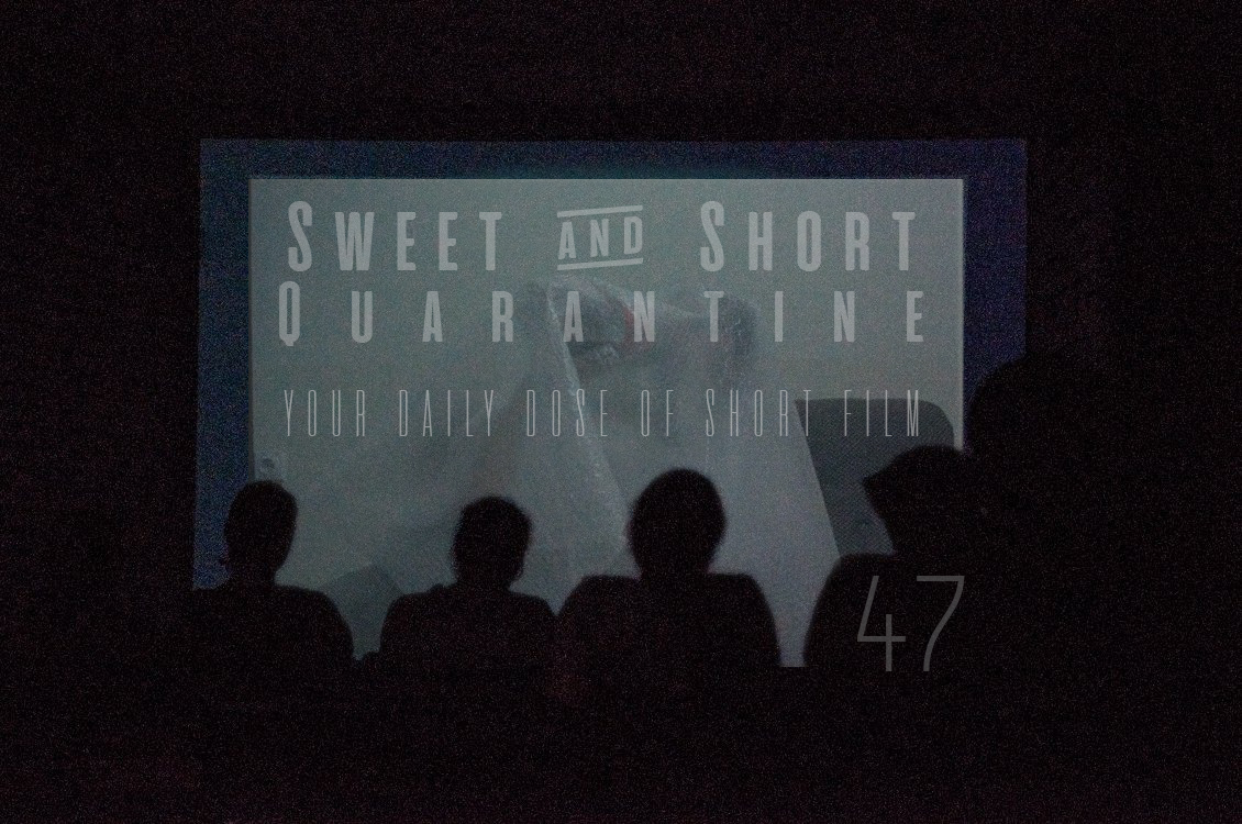 Sweet and Short Quarantine Film Day 47: KOSOVA TRANS